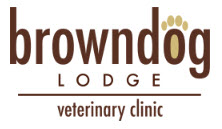 Looking for a Local Veterinarian?